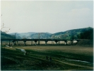 Listertalsperre Okt.1991_4