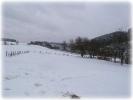 Winter 2014_17