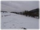 Winter 2014_19