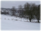 Winter 2014_20