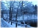 Winter 2014_27