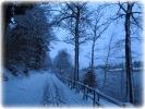 Winter 2014_31